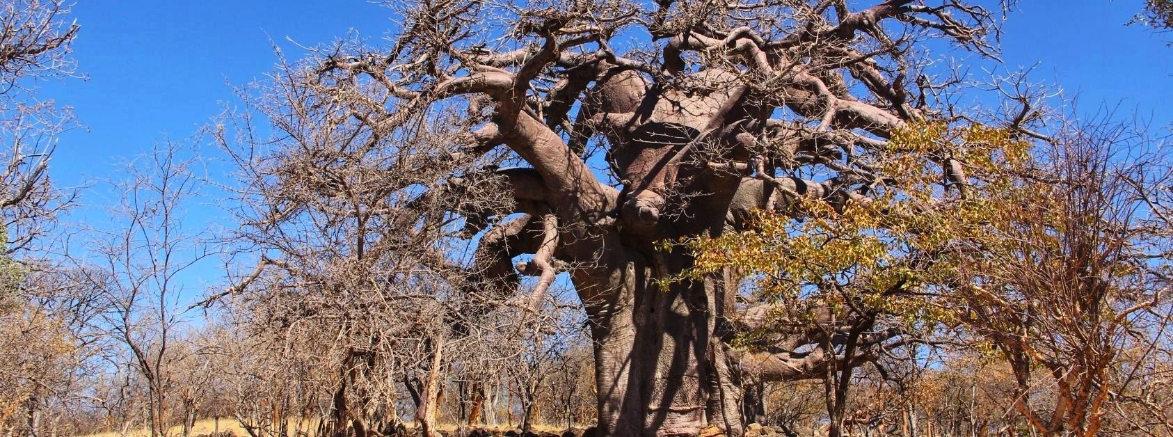 Etiopia natura